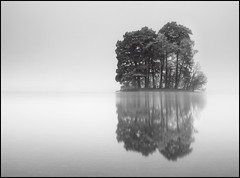 Crannog (angus clyne) Tags: wood old trees mist black reflection tree water pine standing forest lost island scotland ancient woods very near perthshire dream floating scottish calm fresh dreaming tay filter lee mystical loch magical kenmore isle far scots distant crannog lochtay flikcr taymouth forested leefilters