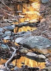 Great Falls - magic hour reflection (karma (Karen)) Tags: light reflections shadows greatfalls maryland streams puddles magichour