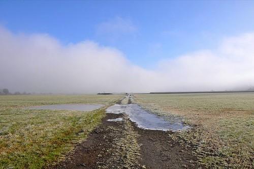 Frozen Field in Cowichan Bay, BC