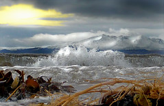 Seaweed, Surf, Snow and Sky (g crawford) Tags: winter sunset snow seaweed cold ice beach water scotland surf waves tide scottish sunsets wave hills shore northshore beaches arran crawford scots goatfell ardrossan seamill westkilbride ayrshirecoast