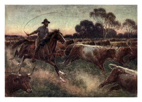 012-Arreando ganado al alba-Australia (1910)-Percy F. Spence