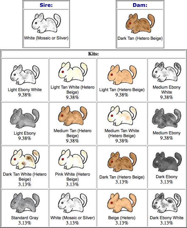 Calculadora genética: Leeloo & Mac