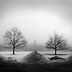 Fog on the Oval (Mike Roslek) Tags: trees bw snow fog campus square montana missoula mainhall universityhall oval universityofmontana explored depgal:size=2x3