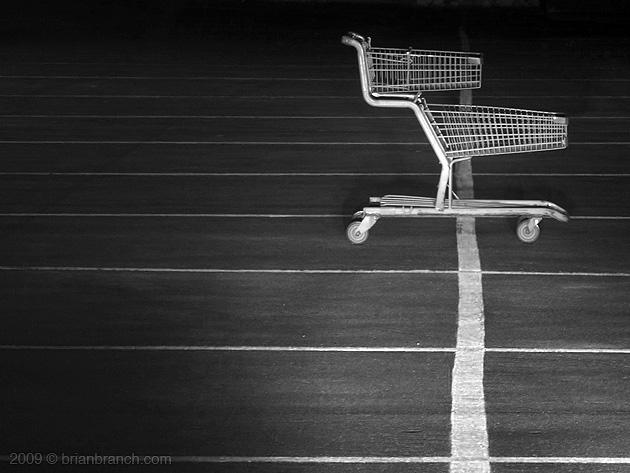 P1070660_cart