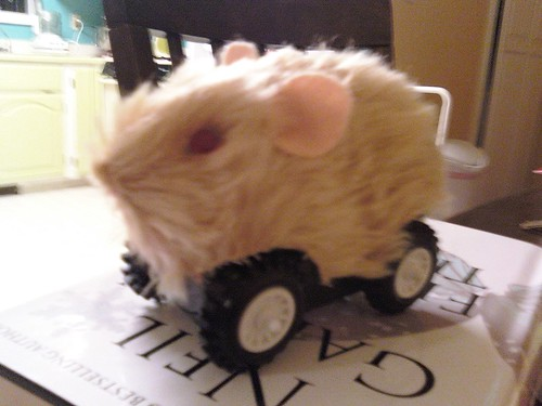 Hamstercar has landed!