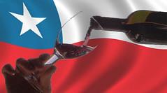 Chile: Viñas adelantaron producción de vino embotellado por pérdidas de inventarios