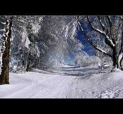 Winter im Sauerland (motivsucher) Tags: schnee winter snow cold hoarfrost kalt raureif sauerland niedersfeld yourwonderland