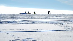 not a polar expedition ... (Hyperfinch) Tags: schnee winter snow germany landscape deutschland nikon hessen landschaft 2010 rhn hesse wasserkuppe rhoen d80 hyperfinch