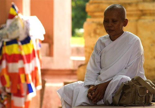 A Buddhist Nun Meditating At The Mahabodhi Temple