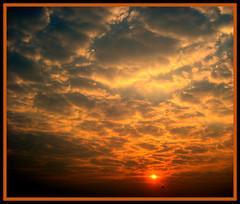 Shining shot (@ anshu @) Tags: morning sky cloud sun india nature sunrise rise mumbai 1001nights anshu greatphotographers flickraward artofimages flickraward 1001nightsmagiccity mygearandmepremium