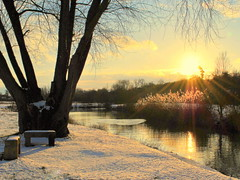 Winter sun caresses (mujepa) Tags: winter sunset snow france backlight river rivière neige lorraine marly contrejour sunbeams rayons moselle 日没 seille caresses naturepoetry impressedbeauty