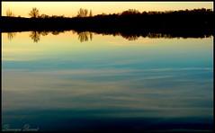 Nuages d'eau (Dominique Dumont Willette) Tags: silhouettes lac ciel arbres nuages reflets coucherdesoleil rivage gers midipyrnes lislejourdain