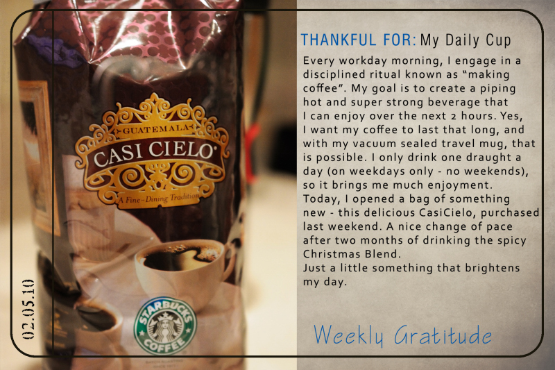 Gratitude - My Daily Cup