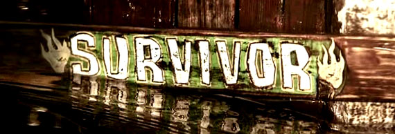 Survivor Heroes Vs Villains