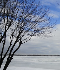 Frozen Richelieu River (ThomasD300) Tags: park trees winter snow tree ice nature clouds river landscape landscapes nikon scenery quebec branches shoreline parks shore 1870mm sceneries winterscenes d300 sainthilaire montsainthilaire rivirerichelieu nikond300 thomasd300 otterburnparkquebec