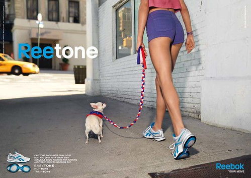 reebok_Dog_Blue