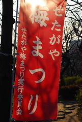 Setagaya Umematsuri (SkylineGTR) Tags: japan tokyo ume matsuri  umegaoka   dsc6377