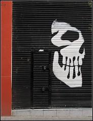 bienvenidos a Guadalajara (Sangroncito) Tags: door mexico skull puerta guadalajara entrada