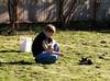 Poke poke (Librarianguish) Tags: home cat garden feline chat nolan kitty sunny tuxedocat 210 unseasonablywarm