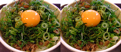 NegiTamaGyuDon (parallel 3D) (yoshing_BT) Tags: foods stereogram stereophoto stereophotography egg stereo stereoview parallel gyudon       parallelview  parallel3d