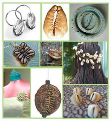 Cowrie Shells (Cassandra Bromfield's Co.) Tags: inspirations
