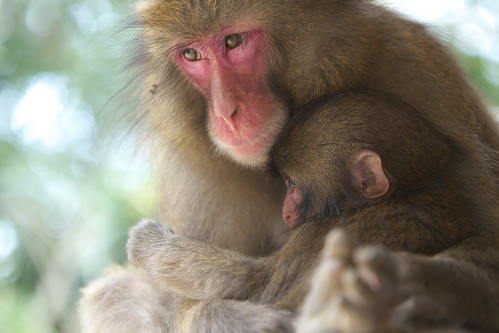 Peacefulness of a mother and a child