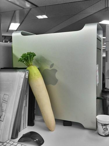 会社のクリエイターのMacProに何故か立派な大根が立てかけてあった。