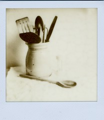 03 - Still Life (akki14) Tags: stilllife polaroid scan tip scanned px100