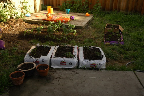 Raised Beds in Bags