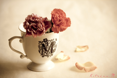 Flowers + M Cup