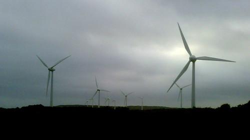 Albany Windfarm