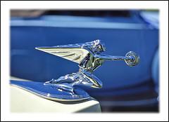 1937 Packard Goddess of Speed (sjb4photos) Tags: car automobile packard autoglamma goddessofspeed 1937packard 1999meadowbrook