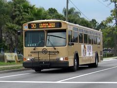 LYNX Bus 559 - Tan (FormerWMDriver) Tags: county orange brown bus public orlando beige florida transportation transit fl mass gillig lynx biege centralfloridaregionaltransportationauthority lynx559