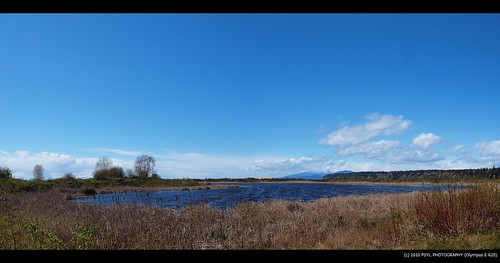 Panoramic View of the Iona Pond