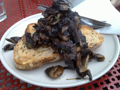 mushrooms (with thyme) on toast