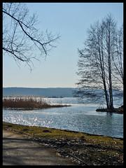 Tollensesee Werder - Neubrandenburg