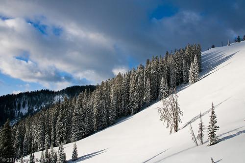 Teton Pass Powder