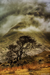 Misty Isle (1) (Shuggie!!) Tags: mist mountains tree skye tourism fog clouds landscape island scotland williams isleofskye karl cuillins hdr cuillin theunforgettablepictures karlwilliams yourwonderland