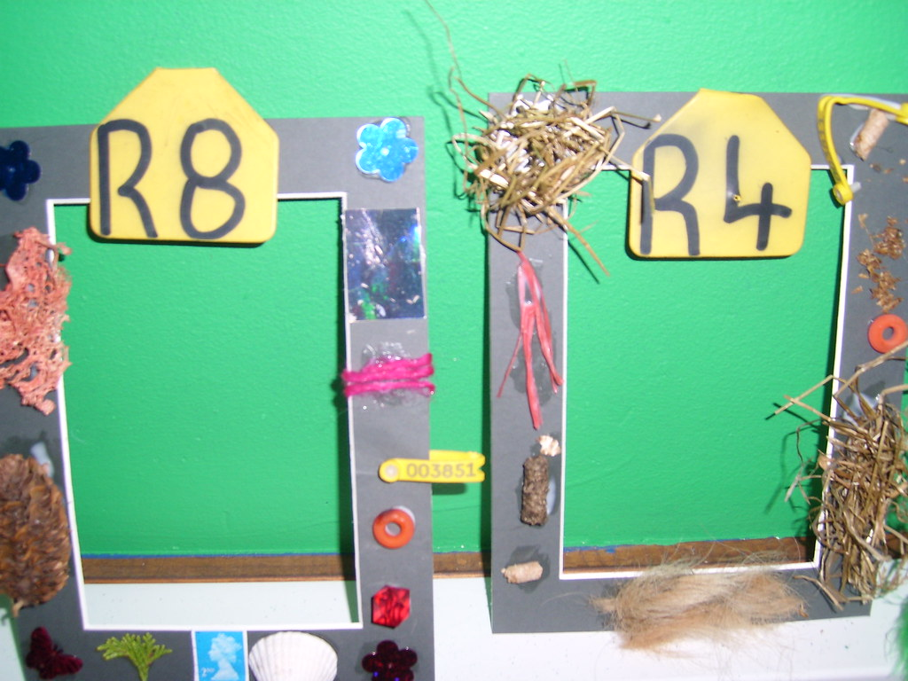 Eco project - collage frames
