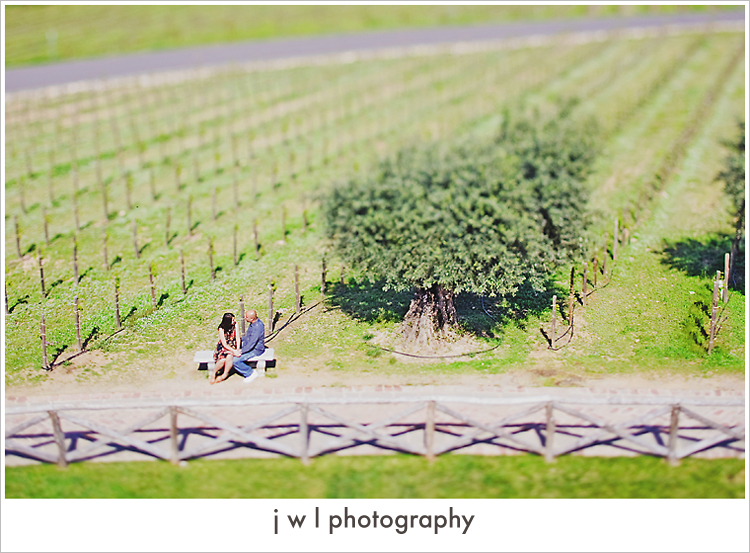 castello di amorosa, engagement session, j w l photography, deepa + roneel_06