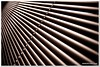 Speed (California CPA) Tags: light lines speed sigma blinded sound blinds convergence slip 20mm f18 ijustlikeit lifeinthefastlane intheblinkofaneye