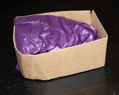 """My cardboard """"shipper"""""""