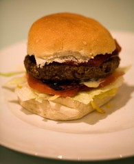 Burger, Wellington (C) 2010