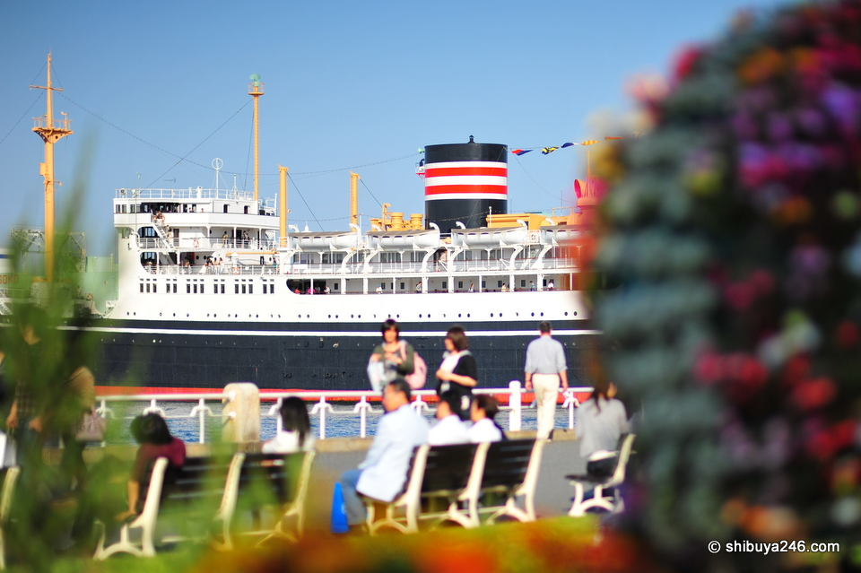 A peak of the boat behind the flowers. Just testing out some DOF here with the 85mm lens.