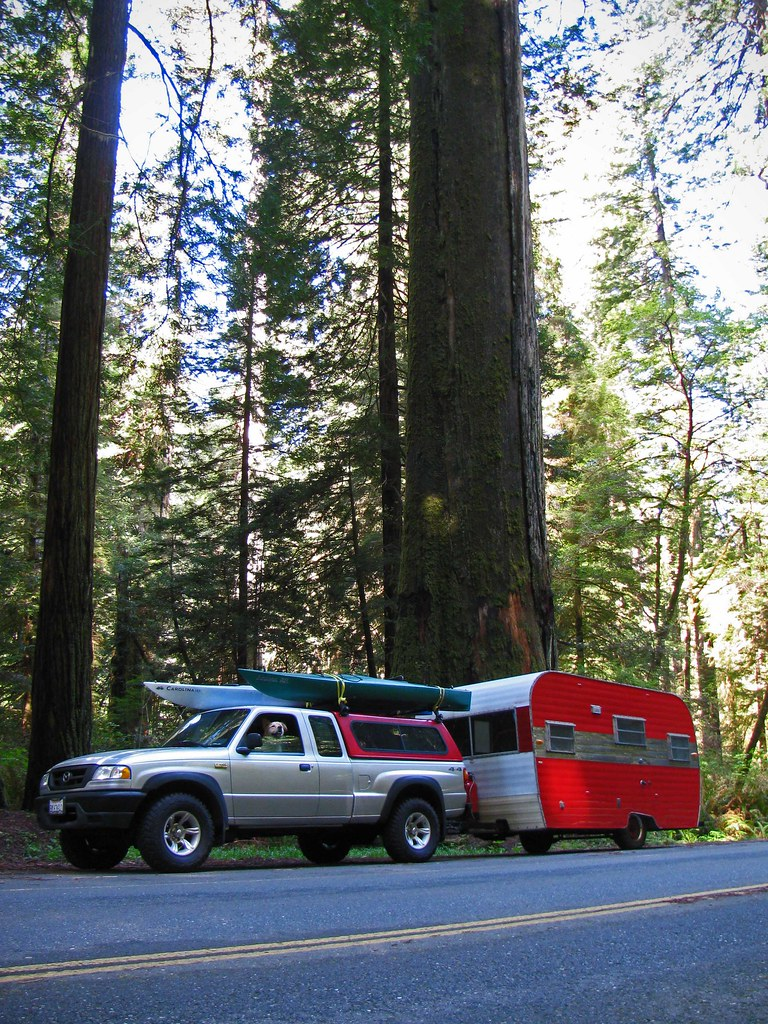 adventuremobileredwoods