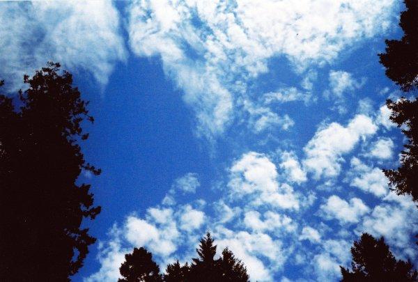 Santa Cruz Sky 3