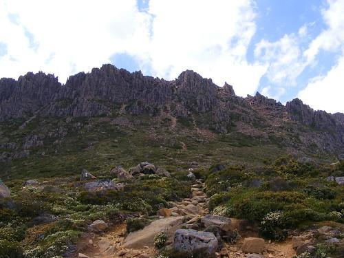 2008_0106australia20407