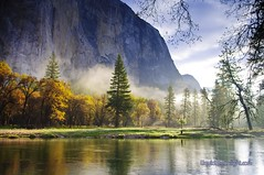 Mistical Magical Yosemite - Yosemite National Park California (Darvin Atkeson) Tags: california park morning trees light usa sunlight mist fog america forest river us merced national yosemite darvin   atkeson  darv   liquidmoonlightcom