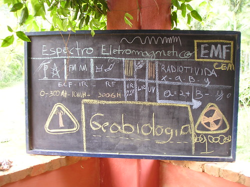 CURSO ; OFICINA - GEOBIOLOGIA (41)