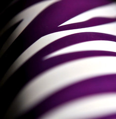235/365 (Lea and Luna) Tags: white print nikon purple bokeh saturday mug 365 60mm nikkor macrolens animalprint travelmug d5000 hpps 235365 365bokeh perfectpurplesaturday 365daysofbokeh happyperfectpurplesaturday